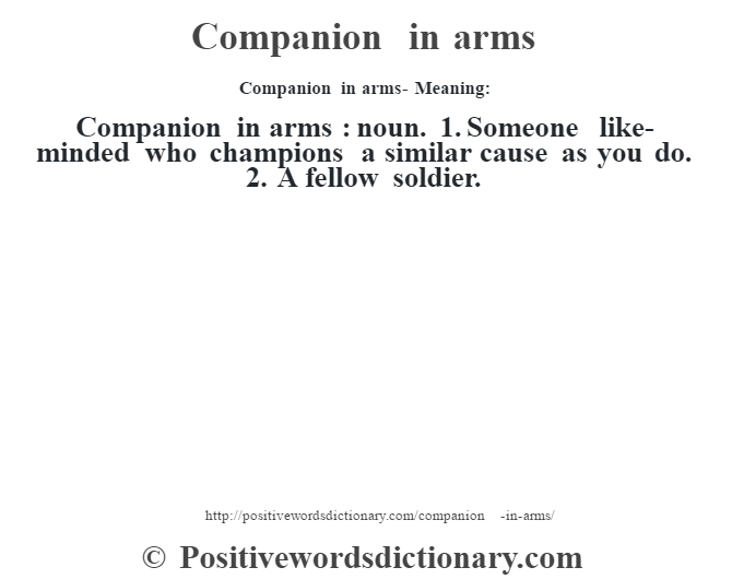 Companion in arms- Meaning:Companion in arms  : noun. 1. Someone like-minded who champions a similar cause as you do. 2. A fellow soldier.