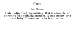 Cute- Meaning:Cute  : adjective.1: Something that is adorable or attractive in a childlike manner. A cute puppy or a cute baby. 2: someone who is attractive.