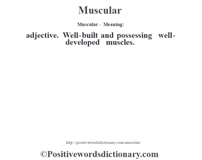 Muscular - Meaning:   adjective. Well-built and possessing well-developed muscles.