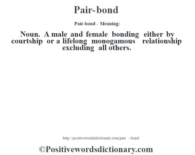 Pair-bond- Meaning: Noun. A male and female bonding either by courtship or a lifelong monogamous relationship excluding all others.