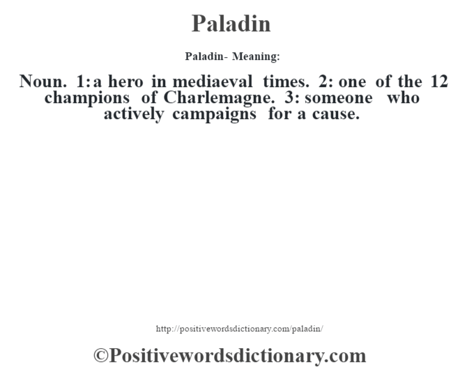 Paladin- Meaning: Noun. 1: a hero in mediaeval times. 2: one of the 12 champions of Charlemagne. 3: someone who actively campaigns for a cause.
