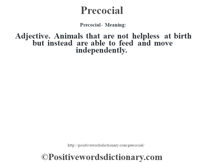 Precocial- Meaning: Adjective. Animals that are not helpless at birth but instead are able to feed and move independently.