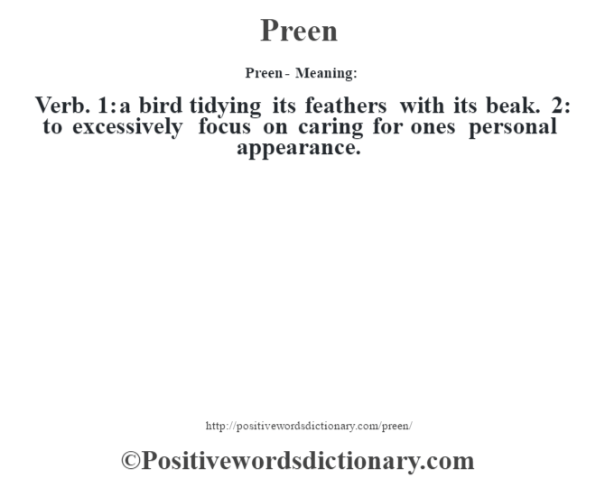Preen- Meaning: Verb. 1: a bird tidying its feathers with its beak. 2: to excessively focus on caring for one's personal appearance.