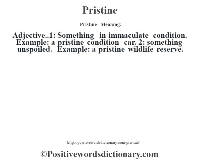 Pristine- Meaning: Adjective..1: Something in immaculate condition. Example: a pristine condition car. 2: something unspoiled. Example: a pristine wildlife reserve.