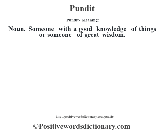 Pundit- Meaning: Noun. Someone with a good knowledge of things or someone of great wisdom.