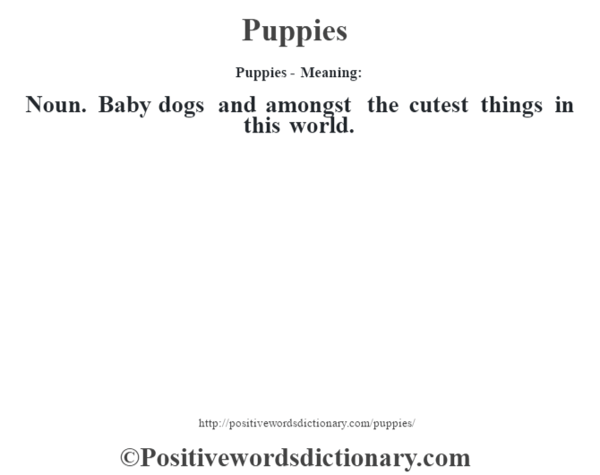 Puppies- Meaning: Noun. Baby dogs and amongst the cutest things in this world.