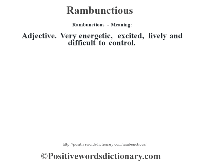 Rambunctious - Meaning:   Adjective. Very energetic, excited, lively and difficult to control.