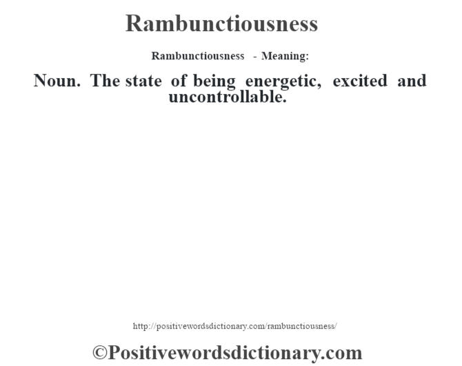 Rambunctiousness - Meaning:   Noun. The state of being energetic, excited and uncontrollable.