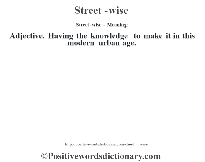 Street-wise - Meaning: Adjective. Having the knowledge to make it in this modern urban age.
