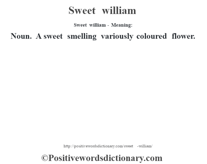 Sweet william - Meaning: Noun. A sweet smelling variously coloured flower.