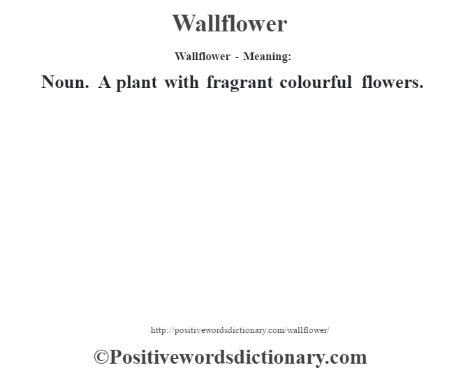 Wallflower - Meaning: Noun. A plant with fragrant colourful flowers.