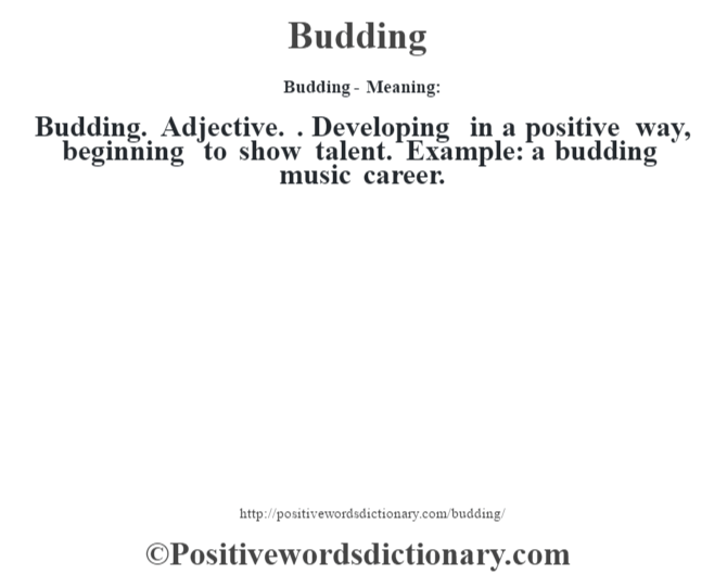 Budding- Meaning:Budding. Adjective. . Developing in a positive way, beginning to show talent. Example: a budding music career.