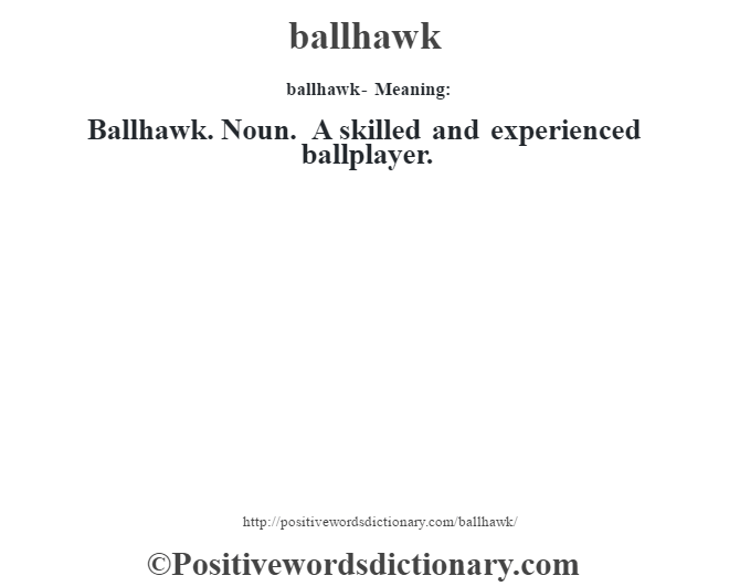 ballhawk- Meaning:Ballhawk. Noun. A skilled and experienced ballplayer.
