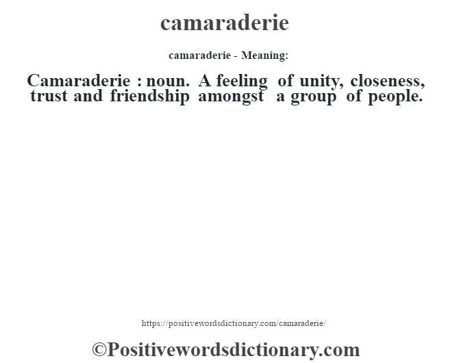camaraderie- Meaning:Camaraderie  : noun. A feeling of unity, closeness, trust and friendship amongst a group of people.